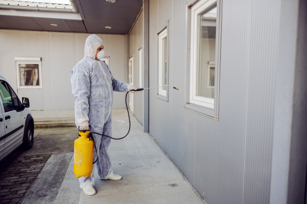 The Benefits of Professional Pest Control Services