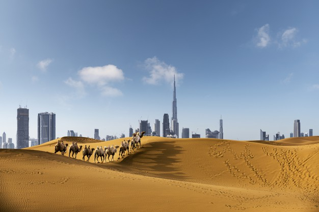 How to Make Your Dubai Trip More Happening?